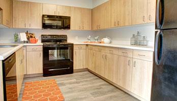 kitchen features